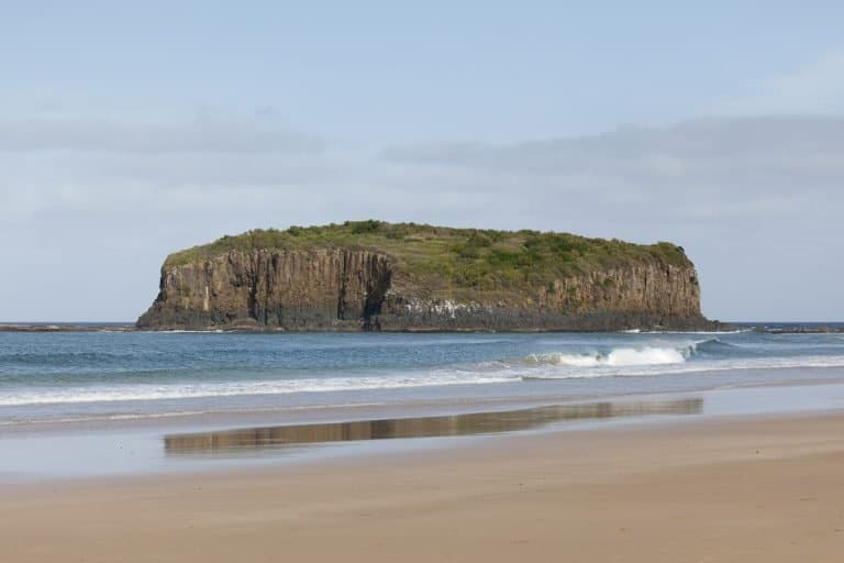 Shellharbour NSW
