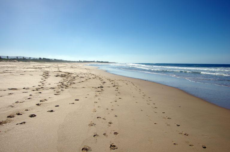 Fairy Meadow Beach NSW